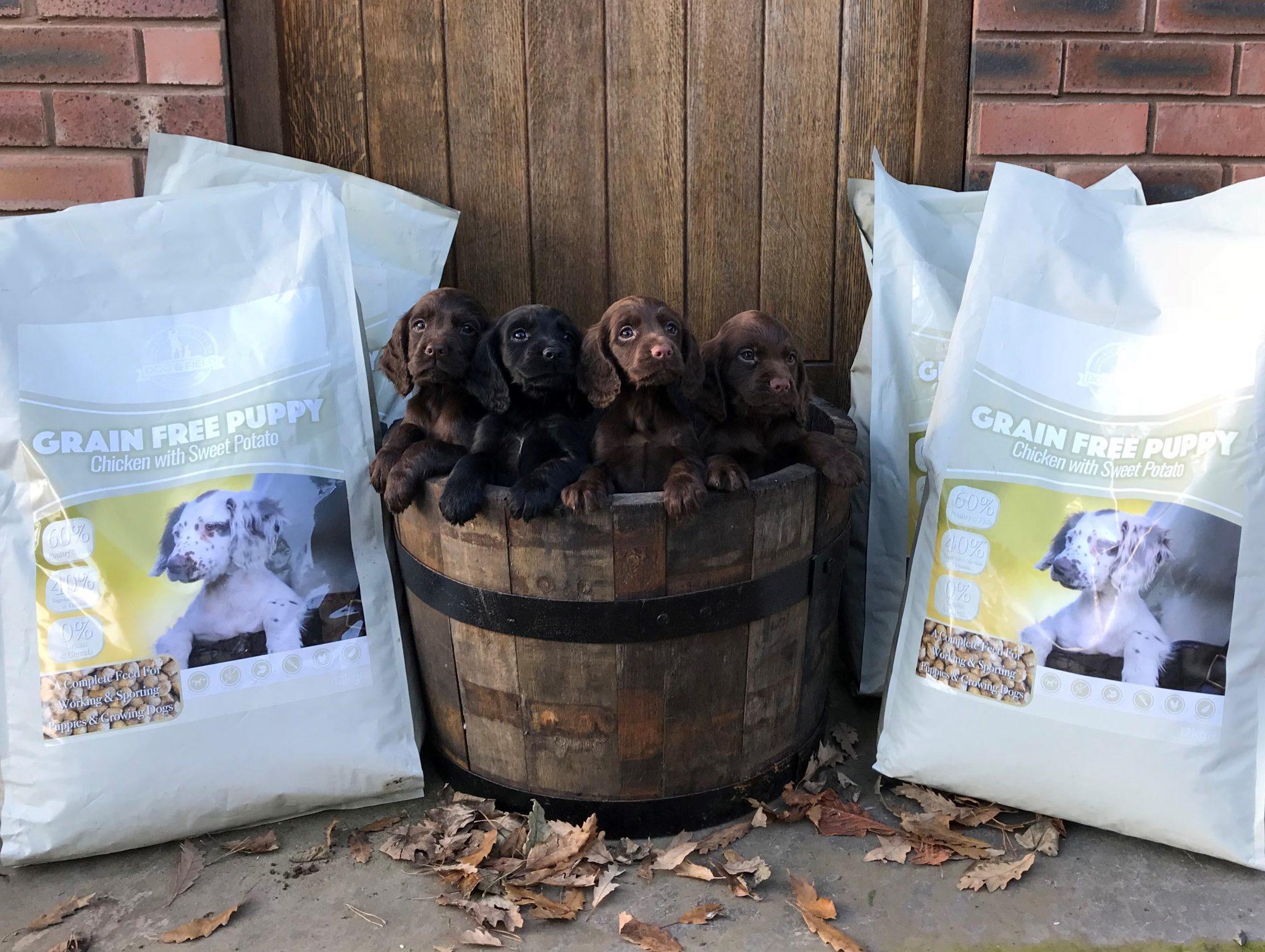 Dog and Field Hypoallergenic Premium Puppy Food